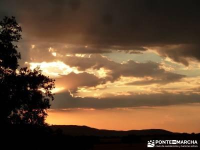 Berrea del Ciervo en Cabañeros y Montes de Toledo en 4x4;viajes diciembre viajes julio